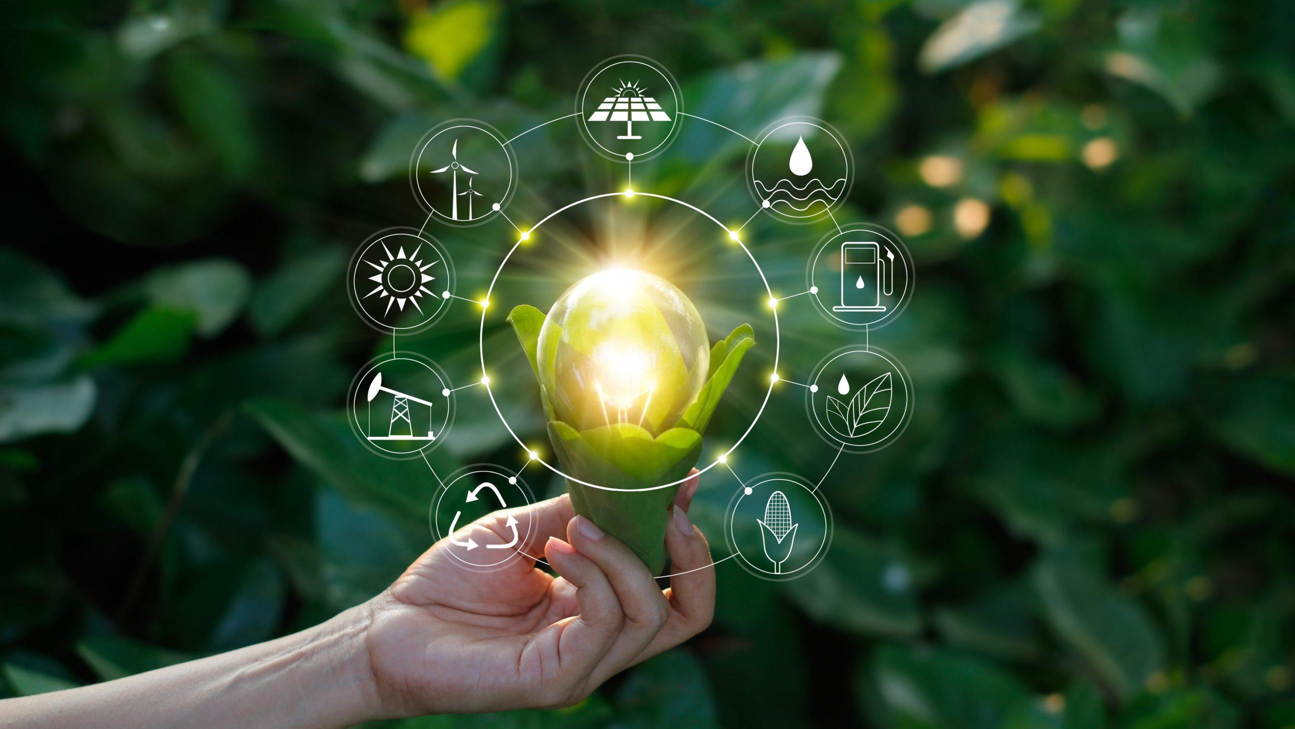 ORSAN ENERGY A.Ş. ulusal ve uluslararası saygın uzmanların bilgi ve deneyimlerine yönelik olarak çevre, enerji ve biyoteknoloji alanlarında çözümler sunmak için Ar-Ge projeleri, danışmanlık ve mühendislik hizmetleri geliştirmek ve uygulamak amacıyla kurulmuştur. ORSAN Biokütleden geri dönüşüm ve elektrik üreten sistemler geliştirmiş, kendisine ait patentler ile global pazarda yenilikçi ve öncü olma yolunda çalışmalarını sürdürmektedir.